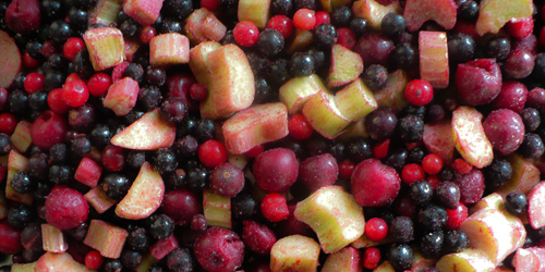 Fruit mix with rhubarb